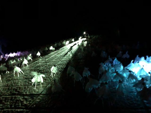 【青木准教授 協力】苫小牧市美術博物館 中庭展示